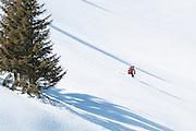Skiabfahrt von Pfaffli, Simmental<br /> <br /> Lonely skier descending a mountain slope