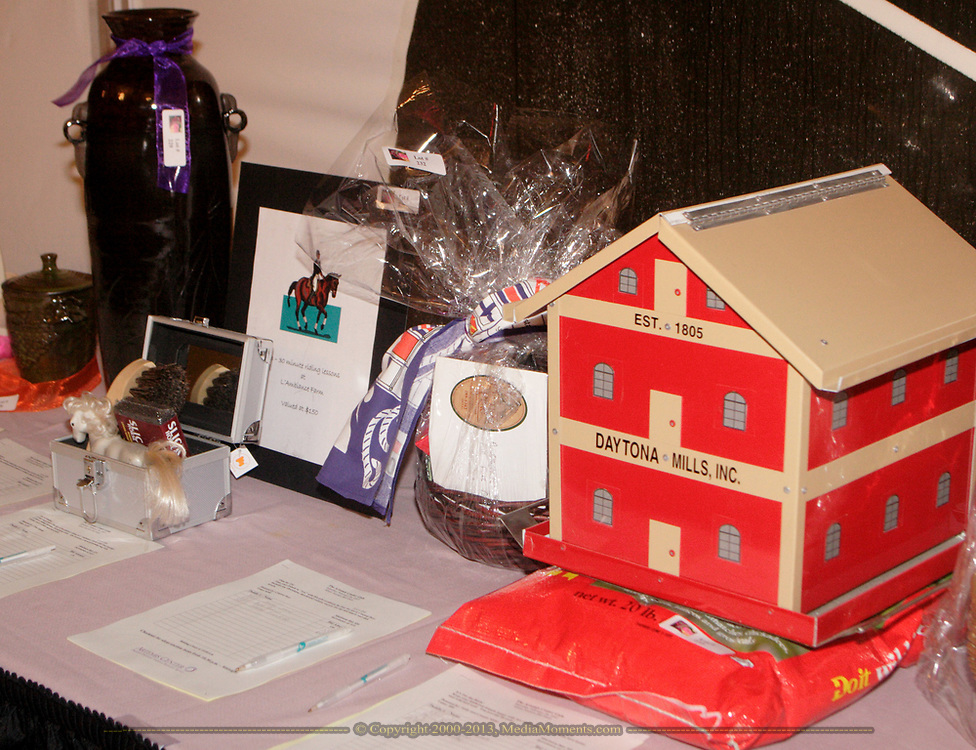 A few of the items in the silent auction at the 17th Artemis Center Gala, Saturday night.