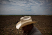 MAXWELL, CA - AUGUST 12: Joe Carrancho has had to fallow 25% of his rice acreage due to a lack of water. (Photo by Max Whittaker/Prime for The Washington Post)
