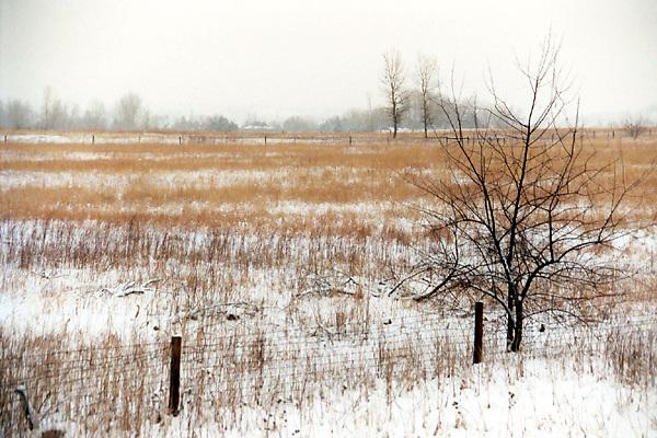 broomfield, colorado