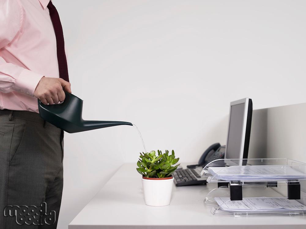 Male office worker watering desk plant
