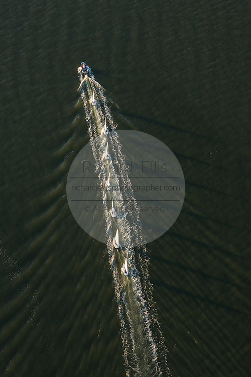 Aerial view of a row of sailboats towed across the harbor after a sailing race in Charleston, SC