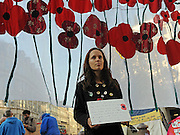 © Licensed to London News Pictures. 13/11/2011. London, UK. A woman holds a placard next to a poppie mural. Occupy London protest camp During the Remembrance Service held at St Paul's Cathedral in London today, 13th November 2011. Photo credit : Stephen Simpson/LNP