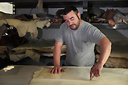 Nacho is cutting up a folio of parchment from the dry skin at the tannery factory of Scriptorium SL in Valencia, Spain. Picture by Manuel Cohen