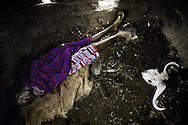 Tanzania, traditional Maasai life. Member of Maasai tribe sleeping