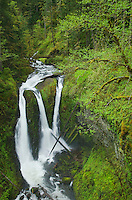 Triple Falls, Columbia River Gorge National Scenic Area, Oregon