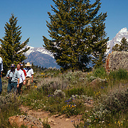 A Teton Science Schools tour group checking out the view near Grand Teton National Park, Wyoming. (Greg Peck, Matthew Bart, Sean Baker, Maura Bushior, Katie-Cloe Stock, Tracy Logan, Paul Maddex, Lead Guide Dawson)