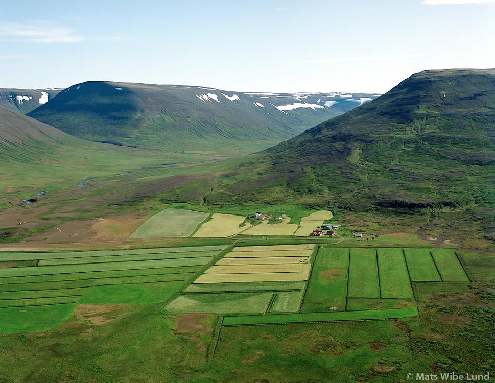 Litla-Tunga, Stóra-Tunga og Galtartunga séð til norðurs, Dalabyggð áður Fellsstrandarhreppur / Litla-Tunga, Stora-Tunga and Galtartunga viewing north, Dalabyggd former Fellsstrandarhreppur.
