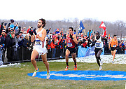 Nov 17, 2018; Madison, WI, USA; Morgan McDonald (723) of Wisconsin defeats Grant Fisher (655) of Stanford and Edwin Kurgat (518) of Iowa State to win the men's race in 29:08.3 during the NCAA Cross Country Championships at the Thomas Zimmer Championship Course.