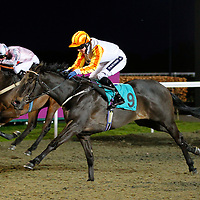 Idle Curiosity and Hayley Turner winning the 8.00 race