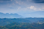 Mountainous Jungle panorama seen from Bukit Patoi's summit, Peradayan Forest Reserve, Brunei