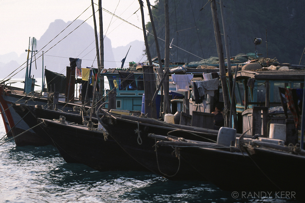 Fishing boats on Halong Bay