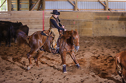 May 20, 2017 - Minshall Farm Cutting 3, held at Minshall Farms, Hillsburgh Ontario. The event was put on by the Ontario Cutting Horse Association. Riding in the 250 Novice Rider Class is Lynne Purdie on Timothy Taz owned by the rider.