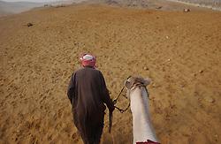 Cairo, Egpyt: An Egyptain man walks in the desert with a camel in Cairo, Egypt . (Photo Ami Vitale)