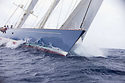 Rebecca sailing in the 2010 Antigua Classic Yacht Regatta, Old Road Race, day 1.