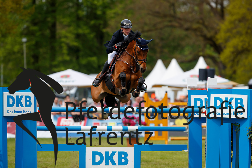 Klatte, Guido (GER), Asagan M<br /> Redefin - Pferdefestival 2017<br /> © Stefan Lafrentz
