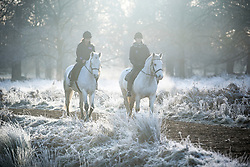 © Licensed to London News Pictures. 19/12/2017. London, UK. Horse riders in freezing temperatures at sunrise Richmond Park in west London as freezing fog hits the capital city. The Met Office has issued weather warnings for freezing fog in parts of the UK, with cancellations expected at Heathrow Airport. Photo credit: Ben Cawthra/LNP