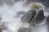 Sanctuary in Stone - Yosemite