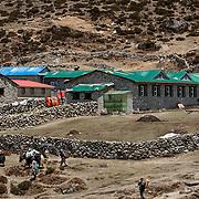 NEPAL. Everest Region, Machhermo. May 7th, 2012. Yeti Lodge & Restaurant.