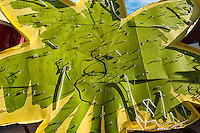 Green and Yellow Neon SIgn in the shape of a palm tree, at the Neon Museum, Las Vegas, NV