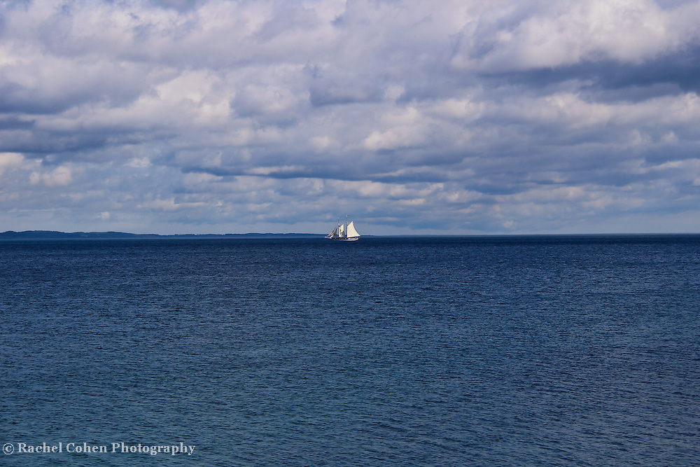 &quot;Wind in the Sails&quot;<br />
