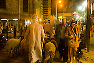 Daily Life in Historic Cairo EG139