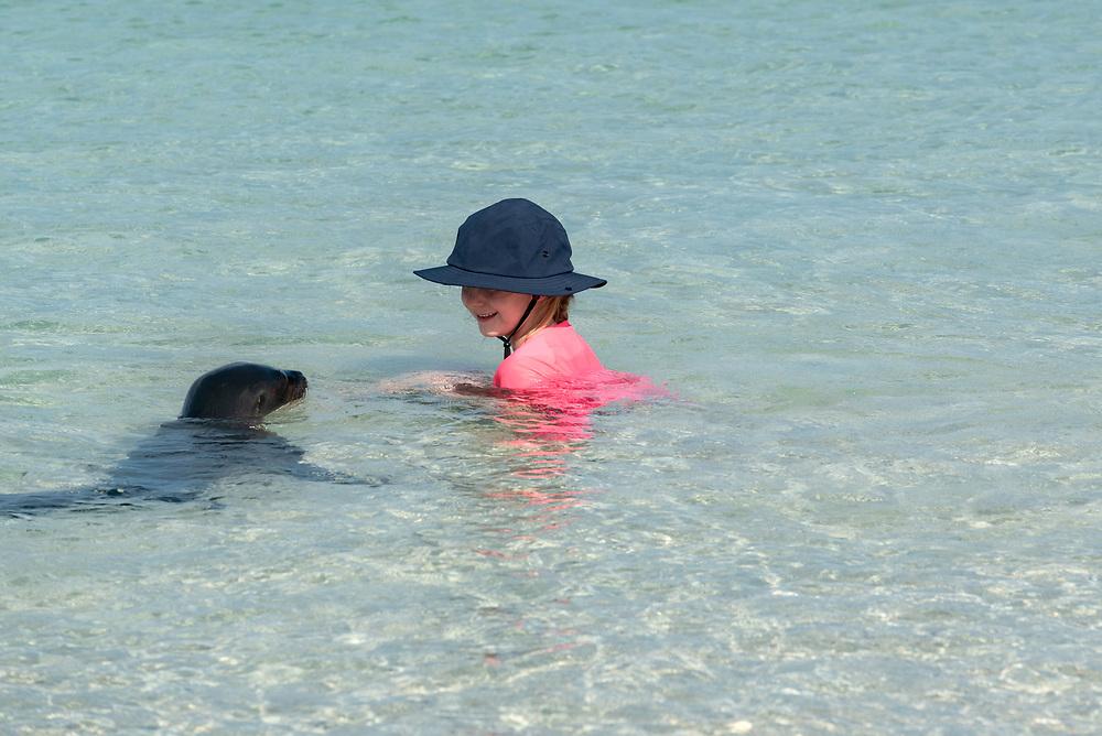 Young sea lion checking out a girl and her father on a beach, San Cristobal Island, Galapagos Islands, Ecuador.