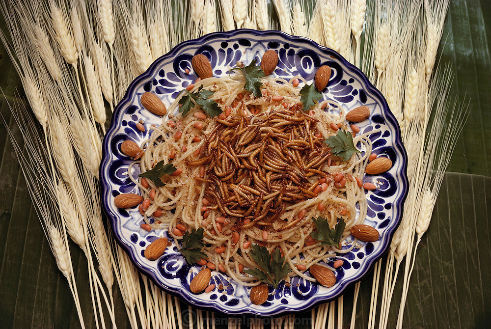 "Mealworm spaghetti (""Spaghetti a la Melanesia"") prepared by Julieta Ramos-Elorduy, an entomologist in her Mexico City kitchen. She created a cookbook of recipes using insects. Image from the book project Man Eating Bugs: The Art and Science of Eating Insects."