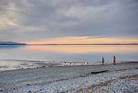 Two female teenagers enjoying a cobblestone beach along Bellingham Bay at sunset, Bellingham Washington USA
