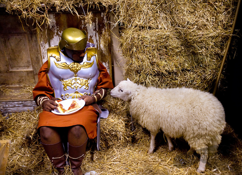 "Photo by Gary Cosby Jr.  Tis the season but not for sharing pizza.  Centurion Tray Mangrum confronts a hungry sheep as he takes a pizza break before he plays his role in the Christmas production ""A Savior For All Seasons"" at Austinville Church of God in Decatur."