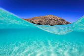 Freediving Sea of Cortez