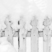 Winter cold weather snowy blizzard with snow piled up on a rustic white picket fence in winter, Westchester County, New York February 2010.