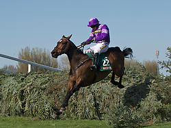 LIVERPOOL, ENGLAND, Friday, April 8, 2011: Always Waining ridden by Tom O'Brian jumps the last fence to win the John Smith's Topham Steeplechase during Ladies' Day on Day Two of the Aintree Grand National Festival at Aintree Racecourse. (Photo by David Rawcliffe/Propaganda)