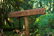 Breitenbush trail sign
