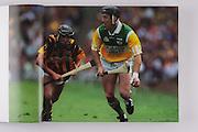 Offalyl's Brian Whelahan and Kilkenny's John Hoyne, 2000 final.