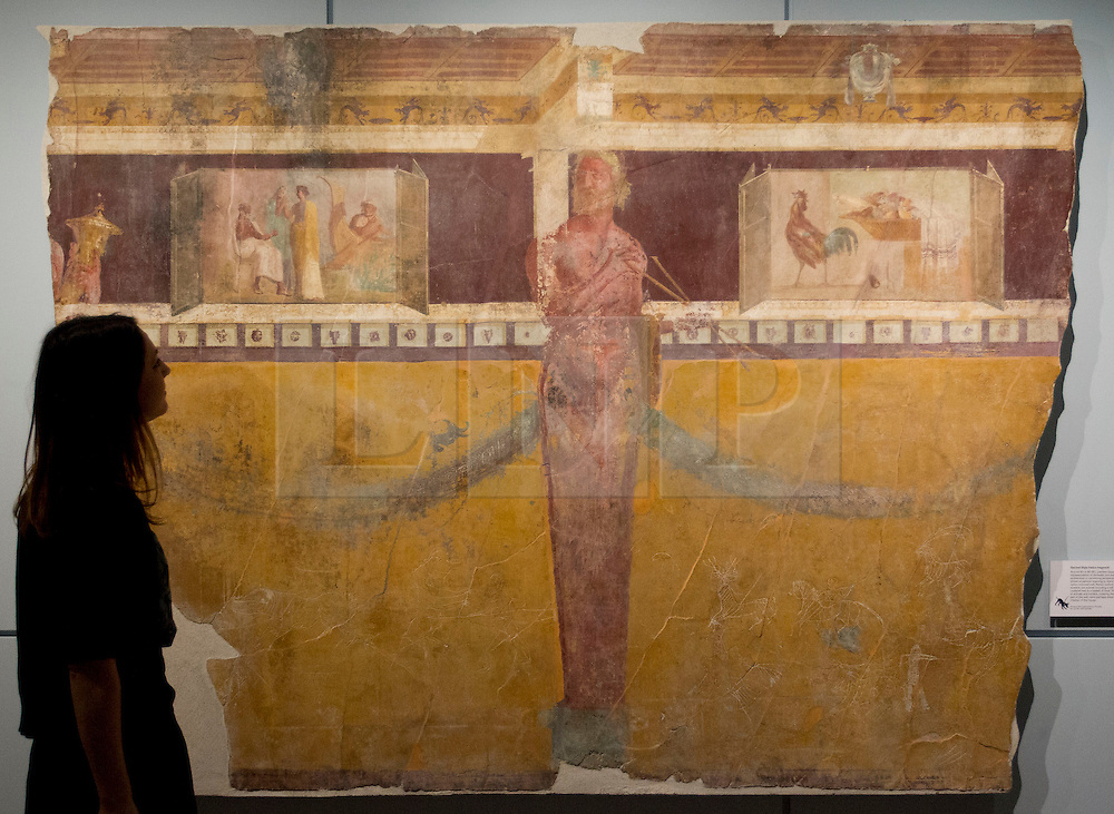 © Licensed to London News Pictures. 26/03/2013. London, UK. A British Museum employee views a fresco recovered from a house in Pompeii destroyed in the Pompeii disaster at a press view for a new exhibition at the museum in London today (26/03/2013). The exhibition, entitled 'Life and Death: Pompeii and Herculaneum', runs from the 28th of March to the 29th of September 2013 and looks at life in the Bay of Naples before and a the time of the catastrophic eruption of Mount Vesuvius; which buried the Roman towns of Pompeii and Herculaneum over 1600 years ago. Photo credit: Matt Cetti-Roberts/LNP