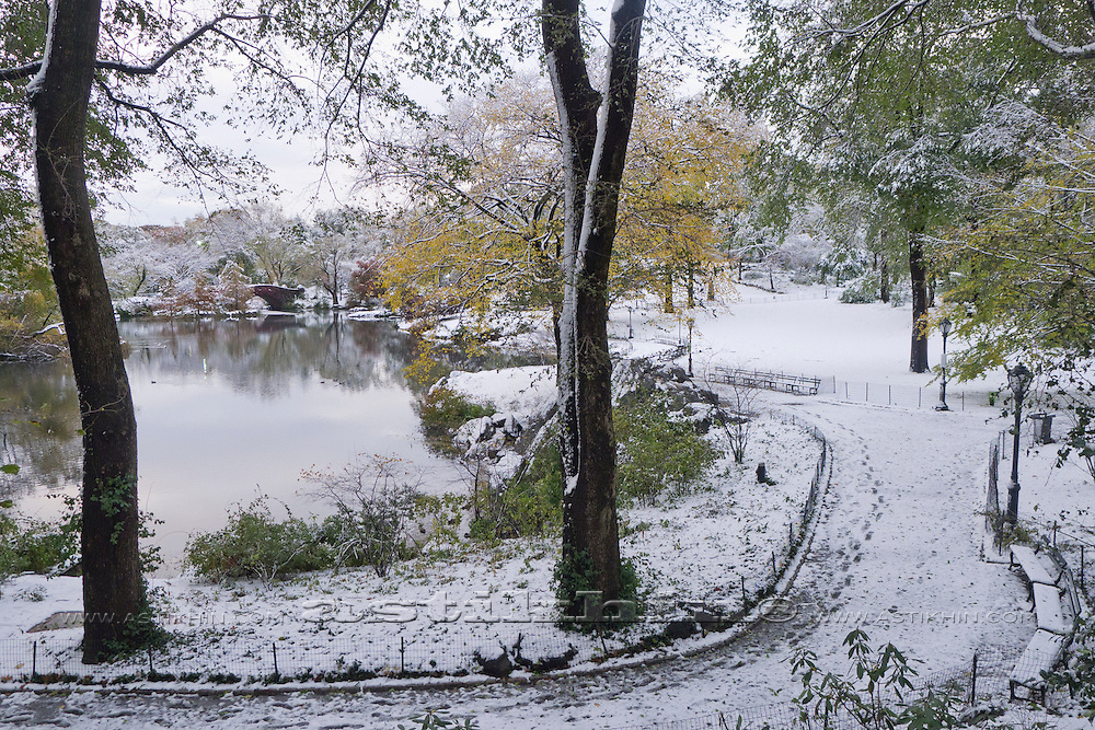 View of Central Park in Fall after first snow.