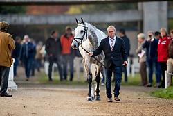 Heffernan Andrew, NED, Gideon<br /> Mondial du Lion - Le Lion d'Angers 2018<br /> © Hippo Foto - Dirk Caremans<br /> 21/10/2018