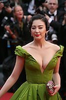 Fan Bingbing attending the gala screening of The Great Gatsby at the Cannes Film Festival on 15th May 2013, Cannes, France.