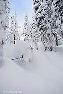 Skiing deep powder at Whitefish Mountain Resort in Montana model released