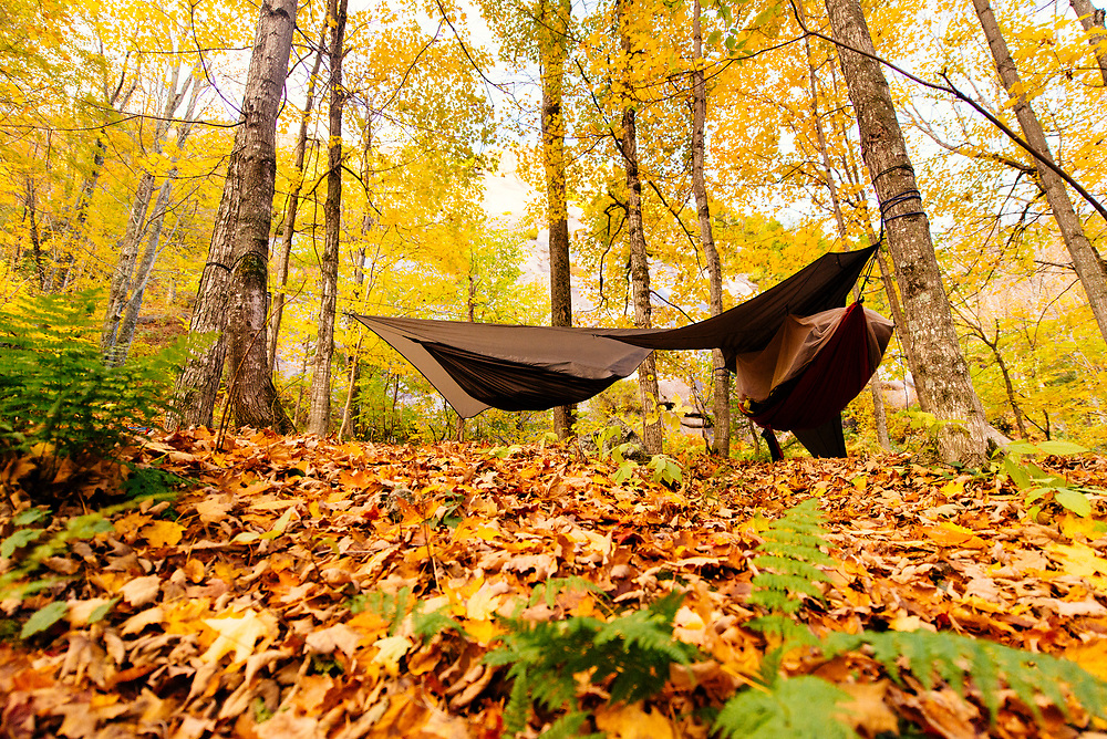 Hammocks setup in fall at the base of Chapel Pond Slab in Keene Valley New York.