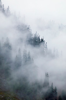 Misty mountain landscape&#xA;<br />