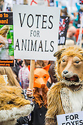 Ahead of Wednesday's free vote, Brian May (Queen guitarist and committed animal campaigner) and Angus Robertson MP, Leader of the SNP in Westminster – along with May's Save Me Trust, PETA, the RSPCA, the League Against Cruel Sports, Born Free, Lush and Humane Society International – protest in Westminster, urging policymakers to 'keep Britain humane by keeping the Hunting Act intact'. While there they hear that the vote has been postponed.