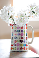 Jug with button design filled with paperwhite narcissi