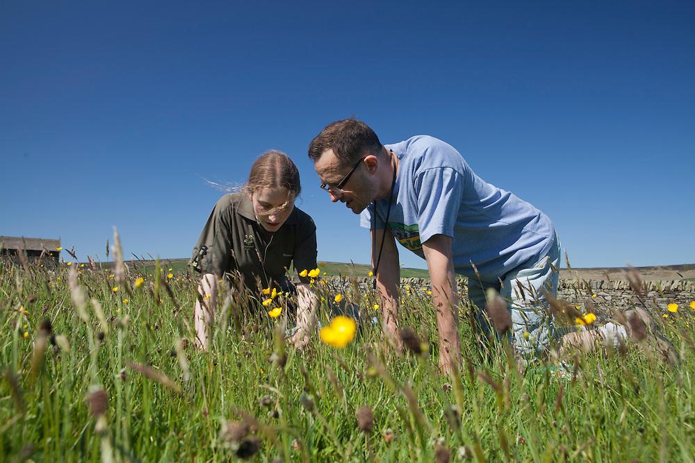 25/05/2012 Widdop , nr Hebden Bridge - Scientific survey of hay meadows.