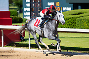 HOT SPRINGS, AR - MAY 02:  Horse #11 Rushie crosses the finish line first during the 10th race at Oaklawn Racing Casino Resort on Derby Day during the Covid-19 Pandemic on May 2, 2020 in Hot Springs, Arkansas. (Photo by Wesley Hitt/Getty Images)