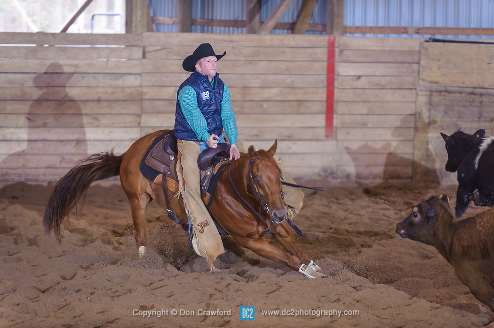 April 30 2017 - Minshall Farm Cutting 2, held at Minshall Farms, Hillsburgh Ontario. The event was put on by the Ontario Cutting Horse Association. Riding in the 25,000 Novice Horse Non-Pro Class is John Martin on Ray Too Smart owned by the rider.