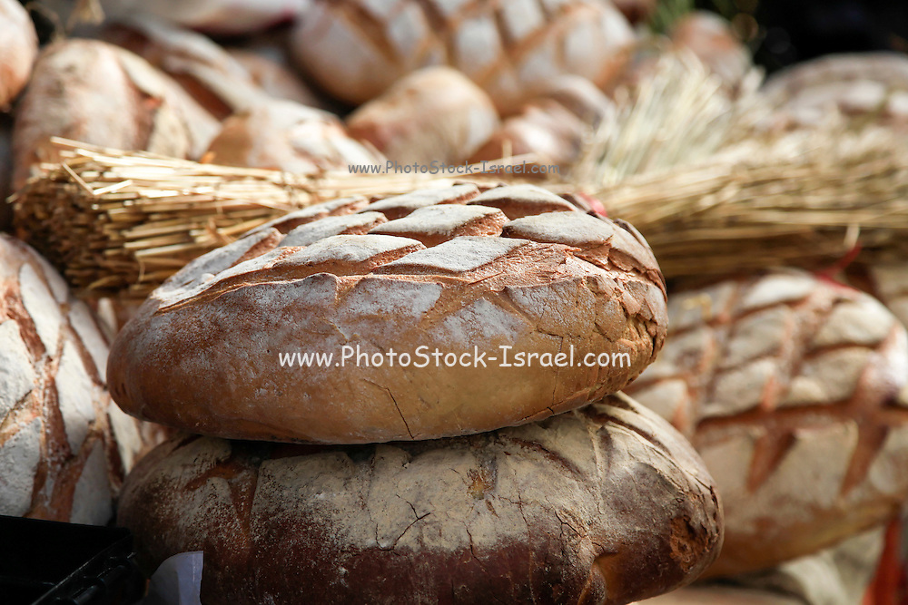 Freshly baked whole wheat bread. Photographed in Krakow, Poland