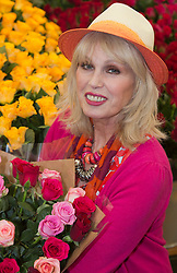 © Licensed to London News Pictures. 20/05/2013. London, England. Actress Joanna Lumley at the Marks & Spencer stand. Celebrities at Press Day Monday of the RHS Chelsea Flower Show. Photo credit: Bettina Strenske/LNP
