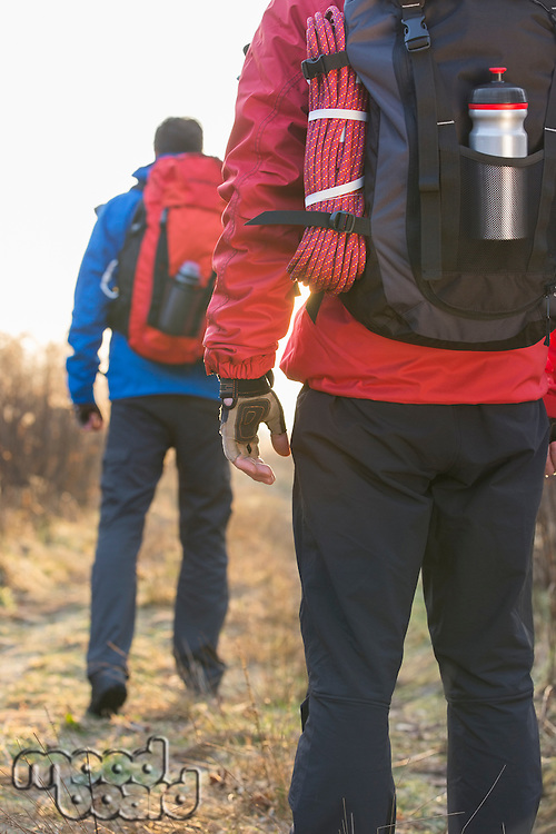 Rear view of male hikers in field
